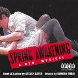 Buy Spring Awakening album CD on Amazon.com