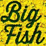 Buy Big Fish album CD on Amazon.com