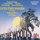 Buy Into the Woods album CD on Amazon.com
