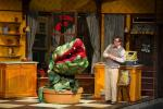 Little Shop of Horrors photo #0