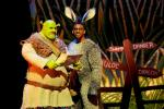 Shrek photo #1